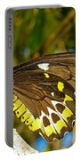 Common Birdwing Butterfly Portable Battery Charger