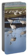 Common Crane Grus Grus Portable Battery Charger