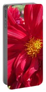 Dahlia Named Nuit D'ete Portable Battery Charger