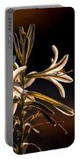 Desert Easter Lily Portable Battery Charger by Robert Bales