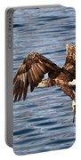 European Fishing Sea Eagle 4 Portable Battery Charger
