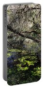 Buttonwood Swamp Portable Battery Charger