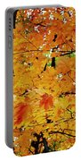 Fall Colors 2014-3 Portable Battery Charger