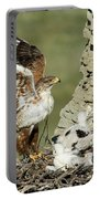 Ferruginous Hawk And Chicks Portable Battery Charger