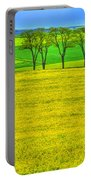 Fields Of Dreams Portable Battery Charger