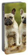 French Bulldogs Portable Battery Charger