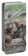 Golden Jackal Canis Aureus Portable Battery Charger