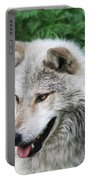 Gray Wolf Portable Battery Charger
