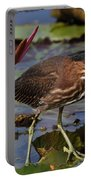 Green Heron Photo Portable Battery Charger