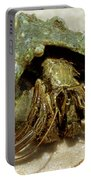 Green Striped Hermit Crab Portable Battery Charger