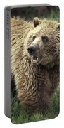 Grizzly Bear Portable Battery Charger