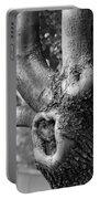 Growth On The Survivor Tree In Black And White Portable Battery Charger