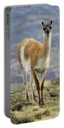 Guanaco Portable Battery Charger