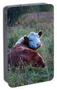 Herefords Portable Battery Charger