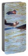Hippopotamus Group In River. Serengeti. Tanzania. Portable Battery Charger