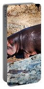 Hippopotamus In River. Serengeti. Tanzania Portable Battery Charger