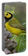Hooded Warbler Portable Battery Charger