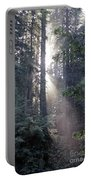 Jedediah Smith Redwoods State Park Redwoods National Park Del No Portable Battery Charger