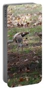 Juvenile Ibis Portable Battery Charger