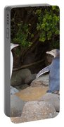 Juvenile Nz Yellow-eyed Penguins Or Hoiho On Shore Portable Battery Charger