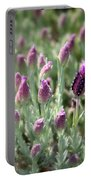 Lavender Standout Portable Battery Charger