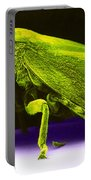 Leafhopper, Sem Portable Battery Charger by David M. Phillips