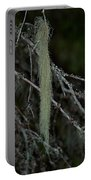 Lichen Portable Battery Charger