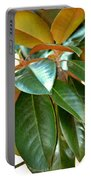Magnolia Leaf Closeup Portable Battery Charger