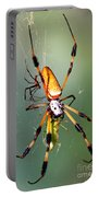 Male And Female Silk Spiders With Prey Portable Battery Charger