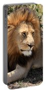Male Lion On The Masai Mara  Portable Battery Charger