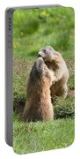 Marmots Portable Battery Charger