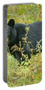 Meadow Black Bear Portable Battery Charger