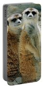Meerkats Portable Battery Charger