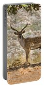 Mesopotamian Fallow Deer 5 Portable Battery Charger