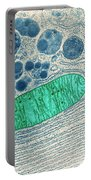Mitochondrion, Tem Portable Battery Charger