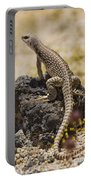 Mojave Desert Iguana Portable Battery Charger