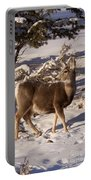 Mule Deer   #6339 Portable Battery Charger