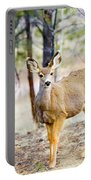 Mule Deer Does Portable Battery Charger