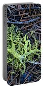 Natural Art Portable Battery Charger