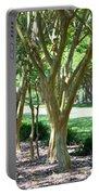 Norfolk Botanical Garden 6 Portable Battery Charger