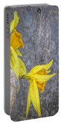 2 Old Daffodils Portable Battery Charger
