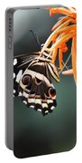 Orchard Swallowtail Portable Battery Charger