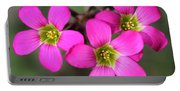 Oxalis Magnifica Portable Battery Charger