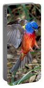 Painted Bunting Passerina Ciris Portable Battery Charger