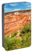 Painted Desert National Park Panorama Portable Battery Charger