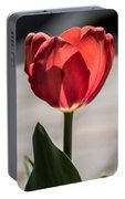 Petals And Sun Portable Battery Charger
