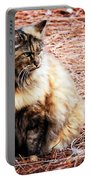 Pine Needle Kitty Portable Battery Charger