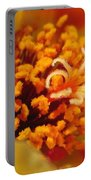 Portulaca In Orange Fading To Yellow Portable Battery Charger