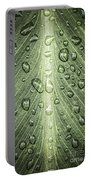 Raindrops On Green Leaf Portable Battery Charger