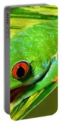 Red Eye Tree Frog Portable Battery Charger